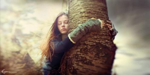 Silvoterapia: abbraccia un albero per essere felice