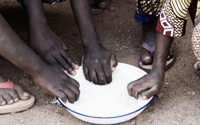 Paradossi alimentari: malnutrizione e obesità