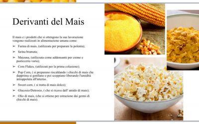Le caratteristiche del mais