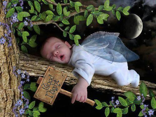 La scienza della siesta