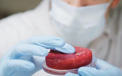Da Singapore la carne sintetica